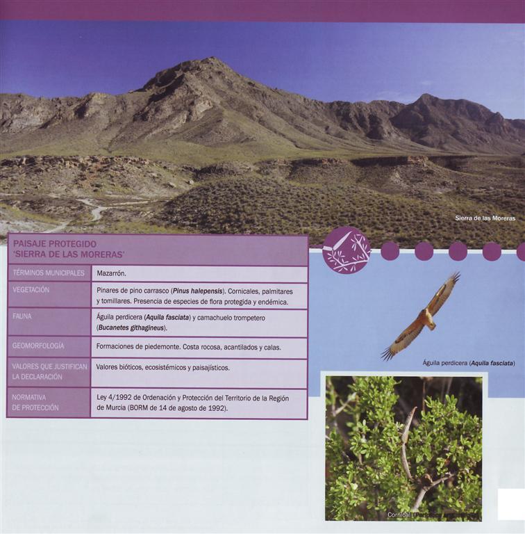 La Sierra de las Moreras, paisaje protegido y ZEPA