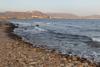playa canina rihuete